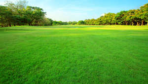 open lawn in Godrej Greens, Pune