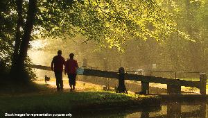 Godrej Wood Park, Mamurdi, Pune